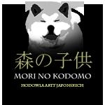 Mori No Kodomo Hodowla Akit Japońskich